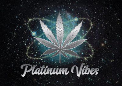 Platinum-Vibes-logo